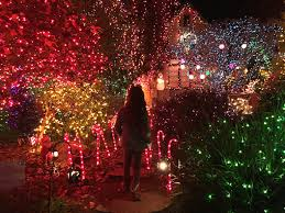 Alameda Christmas Tree Lane 2015 by Best Holiday Lights In The East Bay 510 Families