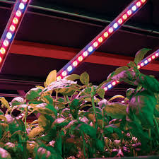 120v LED Grow Lights LED Grow Light Strips