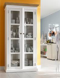 Pulaski Glass Panel Display Cabinet by Furniture Amazing Display Cabinets Design With Glass Doors For