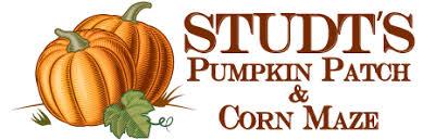 Denver Area Pumpkin Patches by Studt U0027s Pumpkin Patch And Corn Maze