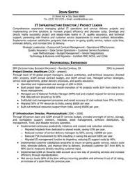 It Director Resume Samples 21 Best Construction Templates Images On