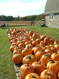 Pumpkin Patch Milwaukee by Shorewest Fall Forecast U2014 Enjoy Activities That Celebrate The
