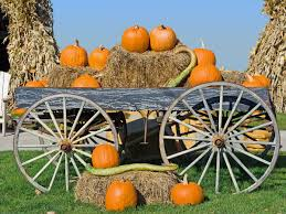 Pumpkin Picking Places In South Jersey by The Best Pumpkin Patches Near Philly Mapped