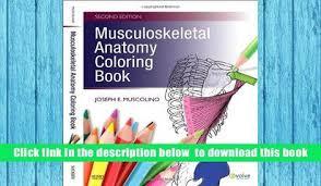 Read Online Musculoskeletal Anatomy Coloring Book 2e Joseph E Muscolino DC Full