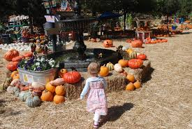 Stone Mountain Pumpkin Festival by Going Places Kathleen Jay U0027s Travel Blog