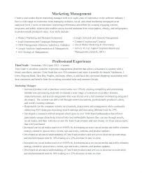Seo Manager Resume Free Professional Templates Download
