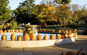 Toms Pumpkin Farm Huntley by Events In Illinois