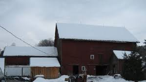 See This Basic Barn From The 1860s Transform Into A Charming Home ... Hand Crafted Custom Builtin Bookcases And Old Barn Wood Ceiling As Countys Old Barns Chimneys Vanish So Do Birds That Do It Again February Projects Barn Door Trying To Figure Out What I Want With It Restoration What Would You With An Open The Queso At High Point Farms Exterior Rustic Bride Yourself Birch Plywood Was Used To This Limited Budget Renovation Of 34 Best Tin Projects Images On Pinterest 269 Barns Country