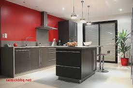 cuisine fonctionnelle aménagement conseils plans et decoration cuisine pas cher pour idees de deco de cuisine luxe