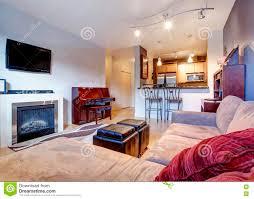 gemütliches wohnzimmer mit teppich kamin und verbundener