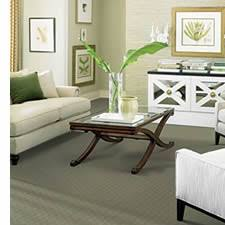 best living room carpet gen4congress