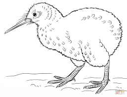 Click The Kiwi Bird Coloring Pages To View Printable