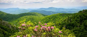 Cheap 1 Bedroom Cabins In Gatlinburg Tn by Gatlinburg Cabins Cabin Rentals In Gatlinburg Pigeon Forge Cabins