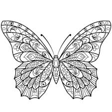 Butterfly Coloring Pages Itunesapple Us App ButtmUvbUpU2812402