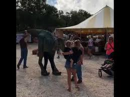 Sarasota Pumpkin Festival 2017 by Hunsader Farms Pumpkin Festival 2017 Youtube