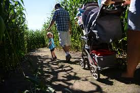 Myers Pumpkin Patch Janesville Wi by Guide To Corn Mazes In Wisconsin I Love Halloween