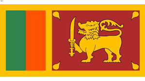 Large Preview Of 3D Model Flag Sri Lanka