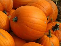 Carmichaels Pumpkin Patch Oklahoma by Where Are The Pumpkin Patches Hayrides In And Around Tulsa For