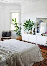 pflanzen im schlafzimmer topfblumen die sich besonders