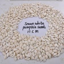 Organic Pumpkin Seeds Australia by Wholesale Pumpkin Seeds Wholesale Pumpkin Seeds Suppliers And
