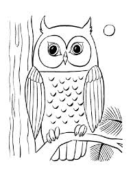 Owl Coloring Pages Night Moon