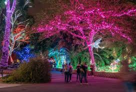 ZooLights Holiday Event At The Phoenix Zoo 20182019