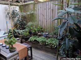 100 Backyard Tea House Review Having Pu Er Tea At The Qiao Bing Shan Fang Tea House In