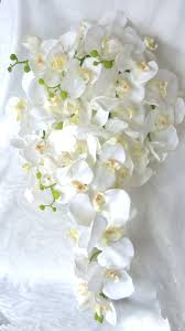Cascade White Orchid Bouquet Boutonniere Phalaenopsis Tropical Wedding 9500 Via