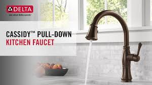 delta cassidy single handle pull down sprayer kitchen faucet in
