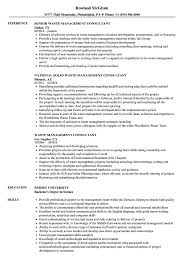 Download Waste Management Consultant Resume Sample As Image File