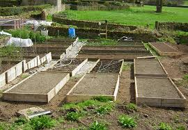 How to Build a Raised Bed  Home Grown Edible Landscapes