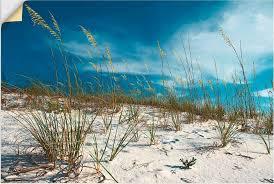 57 99 artland wandbild sanddüne und gräser strand 1