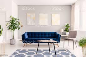 echtes foto pflanzen dunkel blauen sofa und poster an der wand in einem modernen wohnzimmer interieur stockfoto und mehr bilder baum