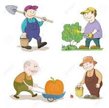 Wheatfield Pumpkin Farm North Tonawanda Ny by Farm Labour Stock Photos U0026 Pictures Royalty Free Farm Labour