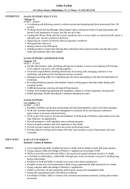 Download Sales Support Resume Sample As Image File