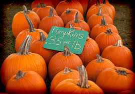 Pumpkin Patch Fort Wayne 2015 don u0027t miss these 15 great pumpkin patches in indiana
