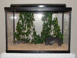 Extra Large Aquarium Decorations by The Great Big List Of Enclosures U2022 Bearded Dragon Org