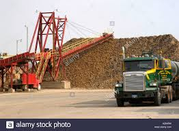 Sugar Beets Are Processed Into Sugar At The Pioneer Sugar Process ... 2015 Hino 195 For Sale 2843 Pioneer Truck Car Sales Youtube 2838 Auto Home Facebook Bedford Ql Wikipedia 22 Ton 3000 Fullsizephoto Pumping 2016 Kcp 52z437 52z434 2014 Putzmeister 47z430