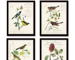 Audubon Bird Prints French Aviary Collage Print Set No 3 Botanical