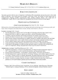 Resume Executive Summary Examples Unique For Reference Professional