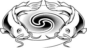 Cartoon Catfish Pictures
