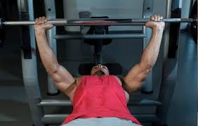 Why The Lats Are So Important In The Bench Press All About