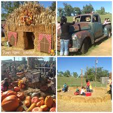 Pumpkin Picking Connecticut Shoreline by Blog Series Down Home Traveler Part 17