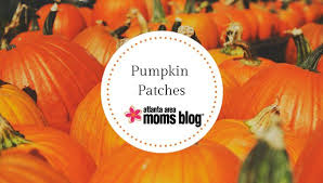 Pumpkin Farms In Georgia by The Ultimate 2017 Fall Guide Pumpkin Patches And Farms