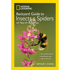 National Geographic Backyard Guide To Insects And Spiders Of North ... National Geographic Backyard Guide To The Birds Of North America Field Manakins Photo Gallery Pictures More From Insects And Spiders Twoinone Bird Feeder Store Birds Society Michigan Mel Baughman Blue Jay Picture Desktop Wallpaper Free Wallpapers Pocket The Backyard Naturalist 2017 Cave Wall Calendar