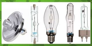 high intensity bulbs