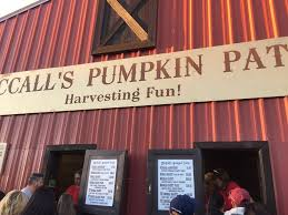 Mccalls Pumpkin Patch Application 2017 by A Castle In New Mexico At A Pumpkin Patch In The Country