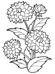 Free Flower Coloring Pages For Preschoolers Dahlia 2 Download And Print Sheets Page Printable