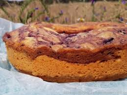 marmorkuchen mit marmelade ein rezept für den omnia
