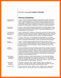 Statement Of Work For Software Development Project And 50 Inspirational Resume Summary Example Templates